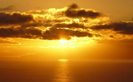 Słońce i witamina D ograniczają rozwój wielu chorób
