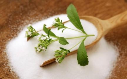 Stevia - nie zawsze tak zdrowa jak się wydaje