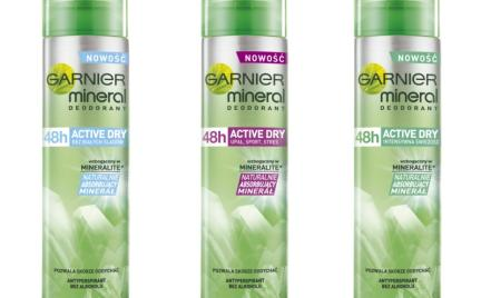 Mineral Active Dry Garnier