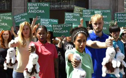Benetton wycofuje angorę ze swoich sklepów