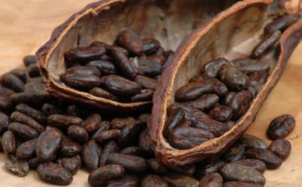 Na każdą kieszeń: testujemy kosmetyki z kakao