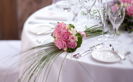 Snobka bierze ślub: wesele-niespodzianka