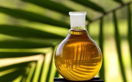 Top 7 olejków z różnych zakątków świata