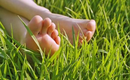 Czas na letnią regenerację stóp